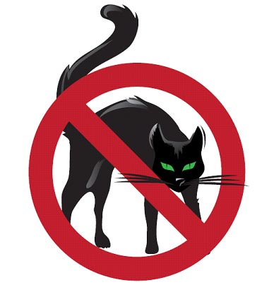 No_pussies_allowed